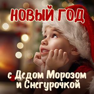 Караоке софия ротару песня белая зима