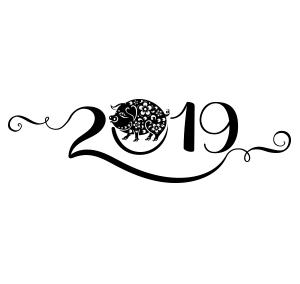 Как встретить символ нового года